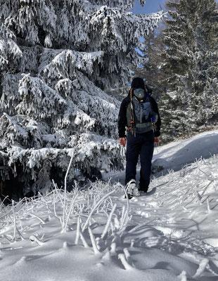 Am Waldkopf