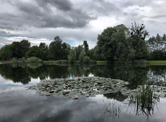 Reischenharter See