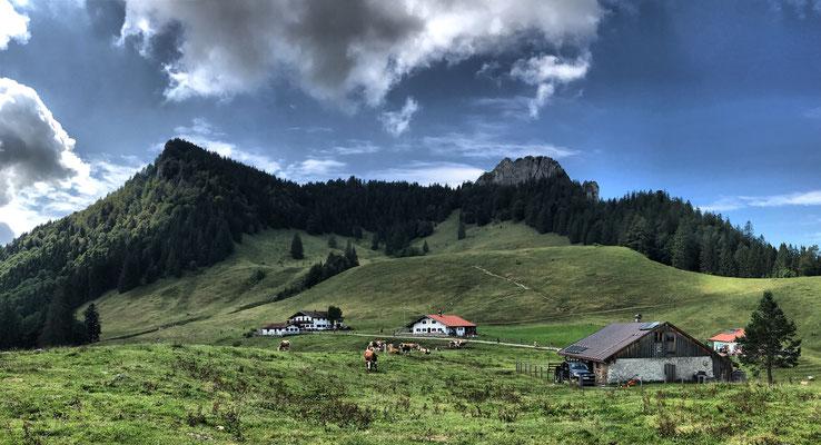 Blick zurück zu den Daffnerwald Almen und dem Heuberg