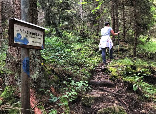Aufstieg über den Franz-Fischer-Weg zum Alfred-Drexel-Haus