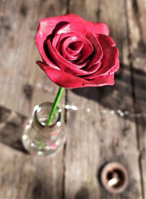 Rose éternelle - 10€