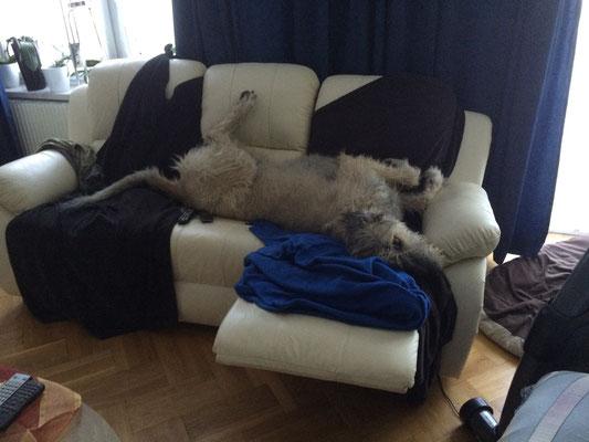 Was .... wieso nicht meine Couch ???? Meine, deine .... unsere, ODER ?