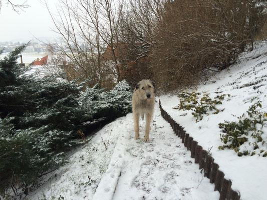 Naomy findet Schnee nicht ganz so super