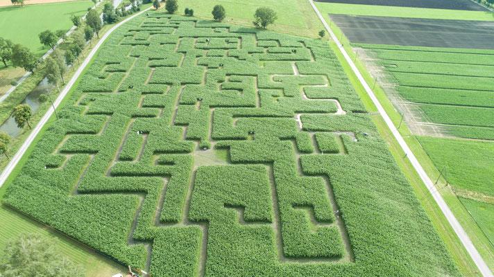 RhyLa - Rhintaler Mais-Labyrinth