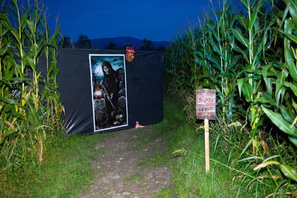 Horror im Maislabyrinth