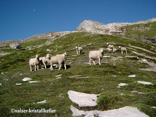 Plattenberg - Vals Graubünden Schweiz