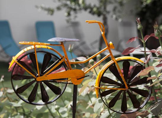 Radfahren Neusiedlersee