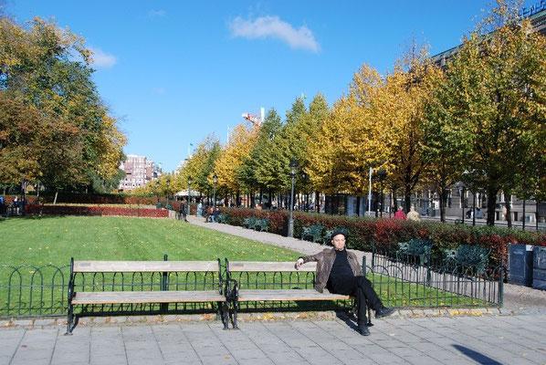 at Kungsträdgården