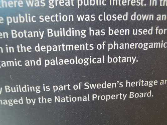 """palaeological botany"" - English for runaways"