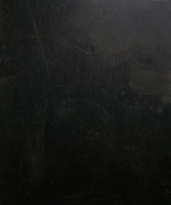 noctune III - dec13 - huile sur toile, 150x200cm