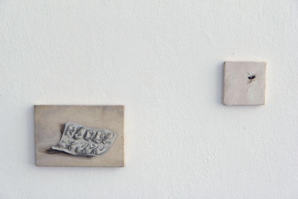 vue Galerie NaMiMa - au creux II / l'invincible