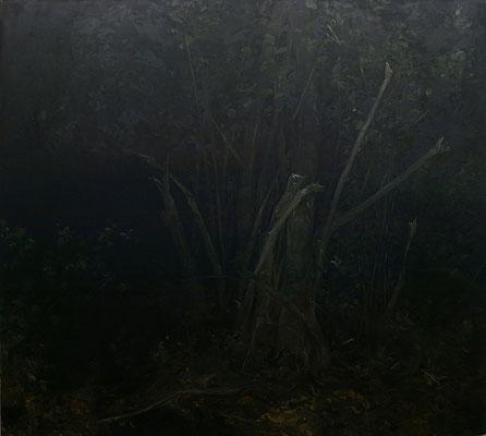 noctune I - oct13 - huile sur toile, 180x200cm