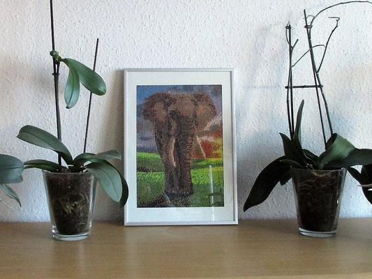 Mosaik Elefant