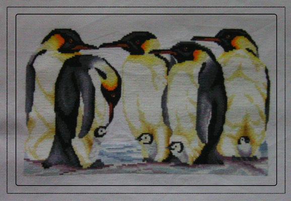 Pinguine, Kreuz und Halbstich