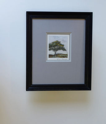 """""""Arbre"""" par Sylviane Chaurand - Gravure - Passe-partout, biseau et sous-carte dans un camaïeu de gris avec un moulure sabot en chêne teinté anthracite."""