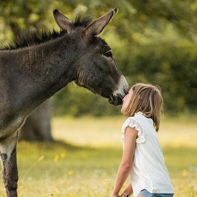 Emotionale Verbindung Mensch und Tier