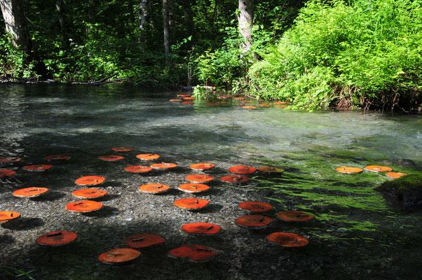 Grindelwald 2014 - Monet's Garden - Ulla & Rolf Klaeger