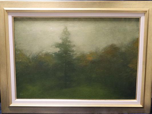 油彩 M12号 Oil on canvas 41cm x 60cm