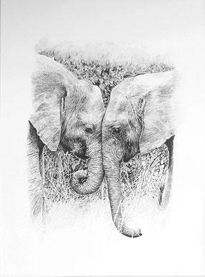 FACE TO FACE, Bleistift auf Papier, graphite on paper, 29.7/42cm, verkauft