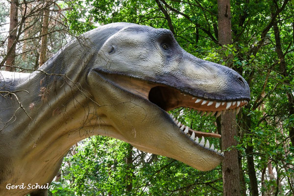 Tyrannosaurus Rex I