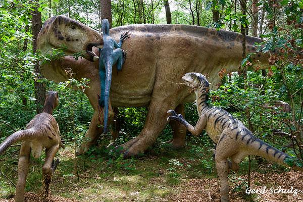 Jagt der Deinonychus