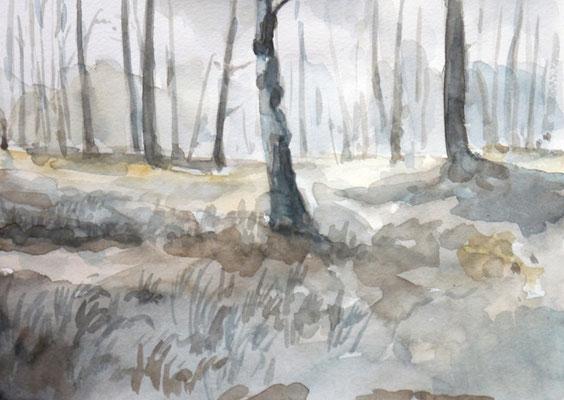 Studie für ein Waldbid, Enno Franzius