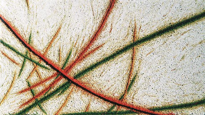 Nature (Natur), 130 x 230 cm
