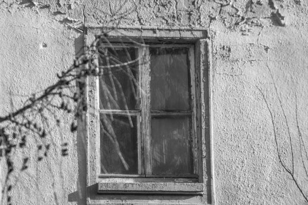 Bogensee Besichtigung rund um den bogensee bester blick fotografie jürgen naß