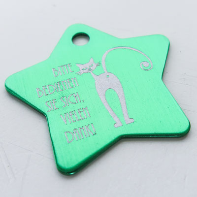 Schlüsselanhänger grüner Stern mit Lasergravur Bitte bedienen Sie sich