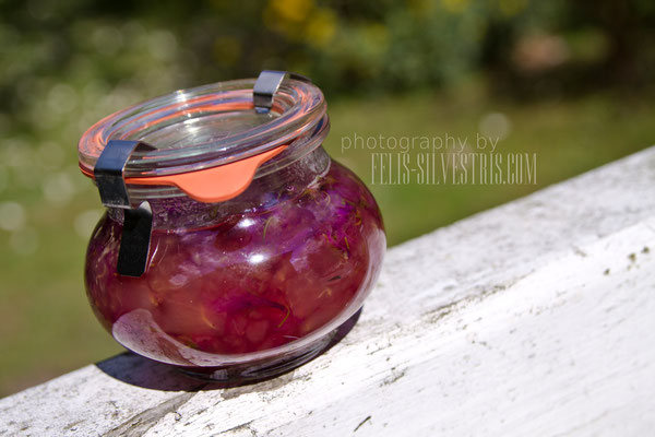 Veilchenmarmelade