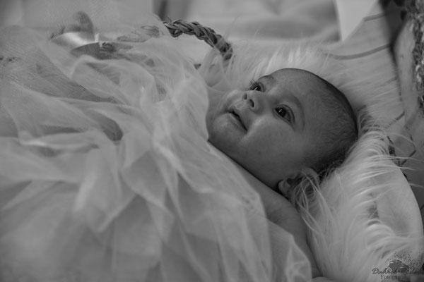 Newborn Lynn-Sofia 6