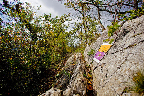 Wettingen Lägerngrat | Aargau | Schweiz