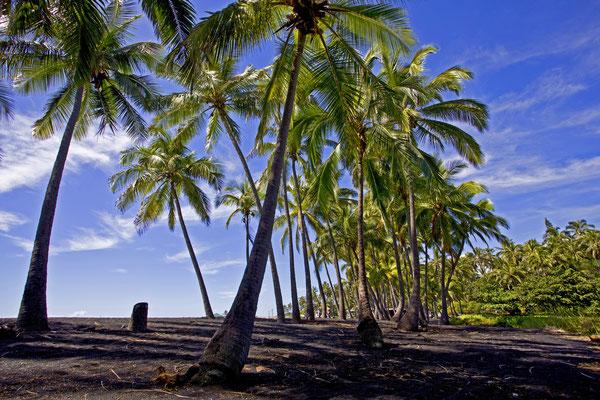 Hawaii | Kona | Blackbeach