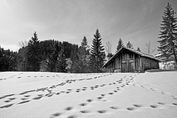 Sattel Hochstuckli | Schweiz