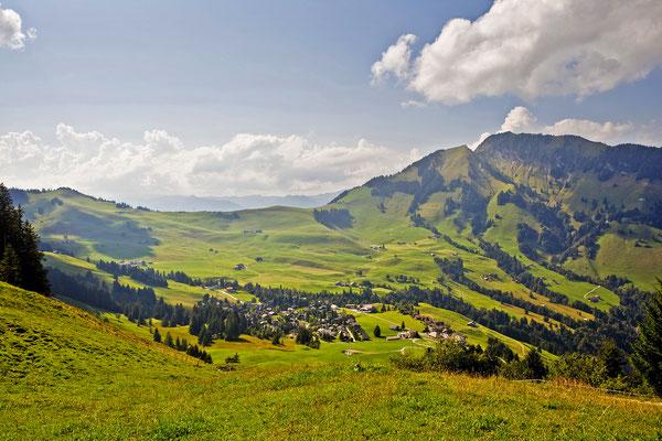 Wirzweli | Schweiz