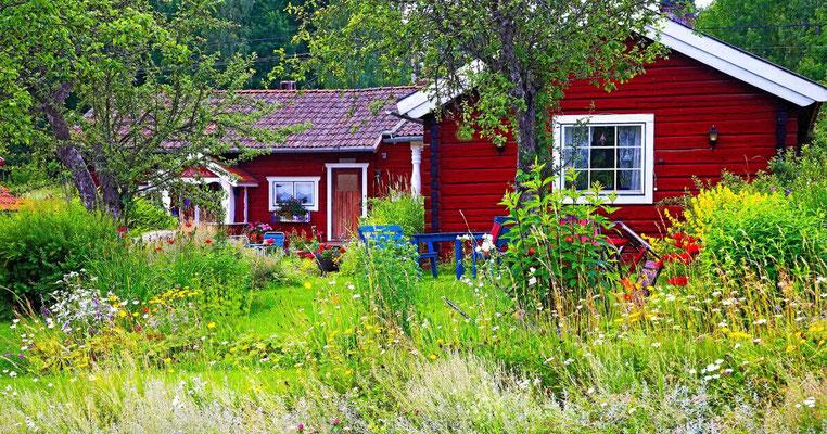 Urlaub mit Hund in Skandinavien, Ferienhaus