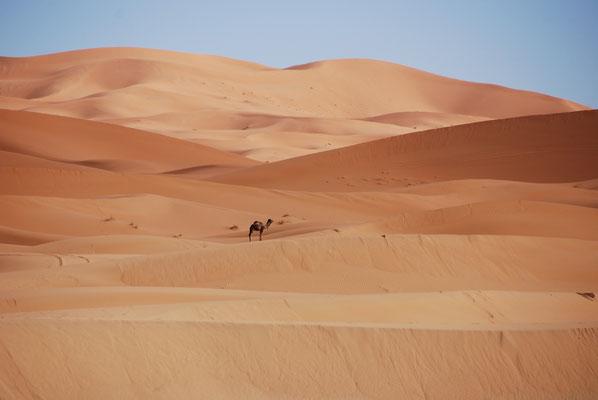Erlebe Deinen exklusiven Urlaub in Marokko | Die Reiserei, Dein Reisebüro in Berlin & Brandenburg