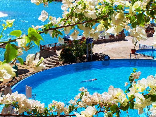 Dein Urlaub im Sultan Bey El Gouna