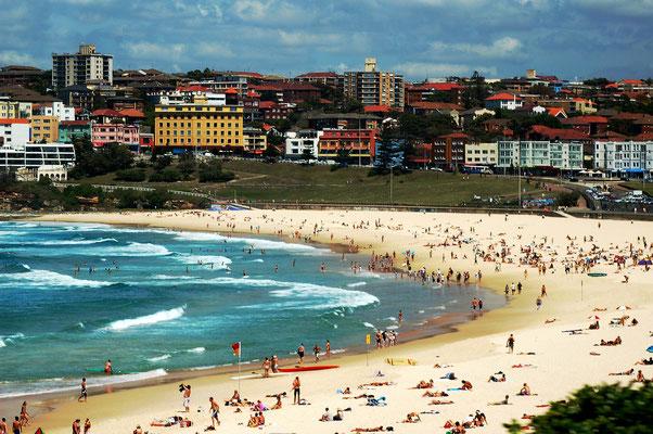 Beliebte Surferstrand Bondi Beach