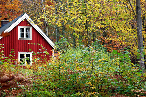 Familienurlaub in Skandinavien