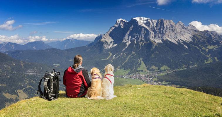 Urlaub mit Hund in Österreich, wandern Berge