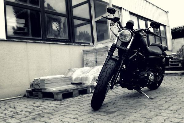 2015_06_17_Harley Davidson Iron 883