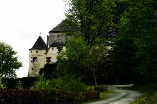2015_04_30 Burg Feistritz