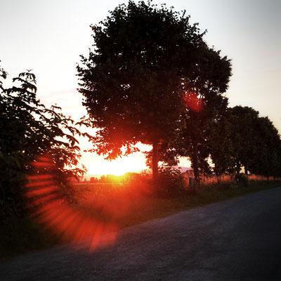 2016 Richtung Sonnenuntergang