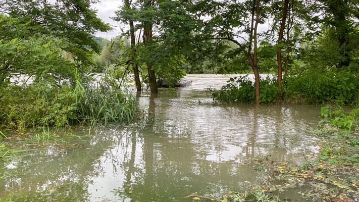Hochwasser Rhein - Schwaderloch 15.07.2021. (Foto CC)