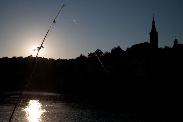 Nachtfischen August 2020. (Foto CC)