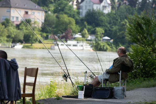 Plauschfischen 2021 der Fischerzunft Laufenburg. (Foto CC)