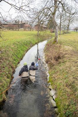 Abfischen Hinterwasserkanal Full Dezember 2020. (Foto CC)