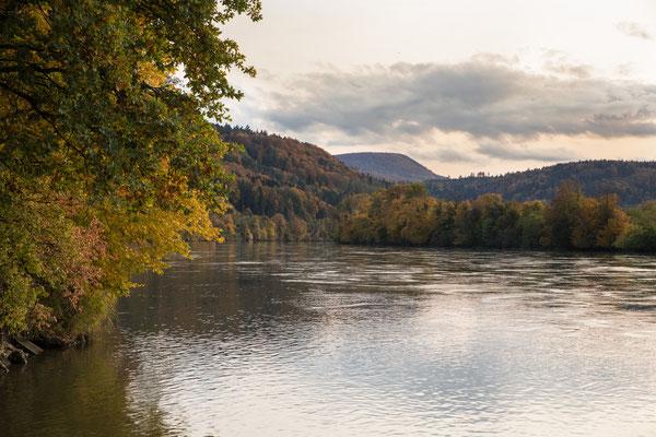 Der Rhein bei Etzgen.  (Foto CC)