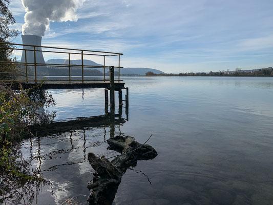 Der Rhein bei Full. Im Hintergrund das Kernkraftwerk Leibstadt. (Foto PC)